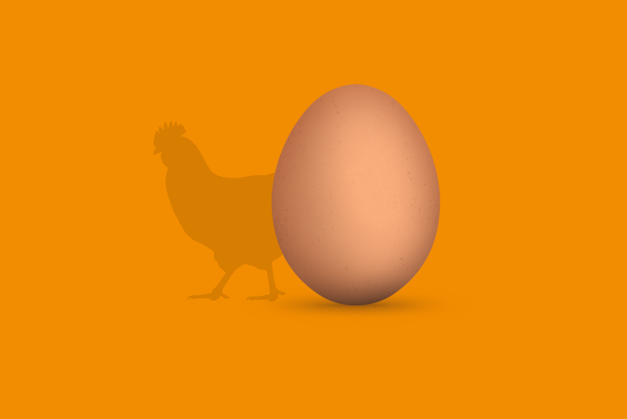 Egg and chicken on orange background - Content and design considerations